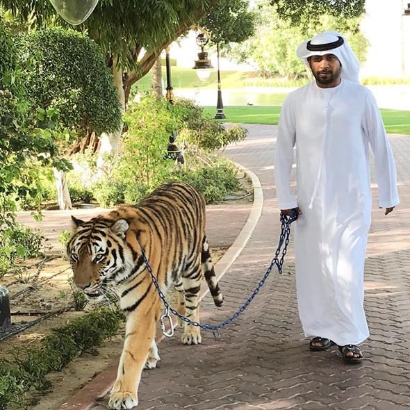 Những điều kỳ lạ ở Dubai - ảnh 1