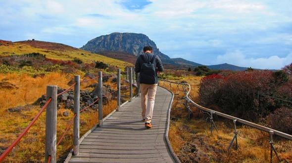 Điểm danh những điểm ngắm mùa thu lý tưởng tại Hàn Quốc - ảnh 1